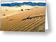 Death Valley National Park Greeting Card