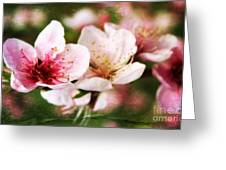 Decadent Spring Delight Greeting Card