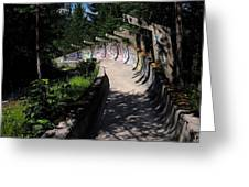 Decayed Bobsled Greeting Card