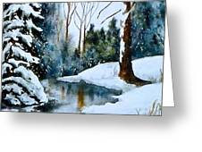 December Beauty Greeting Card