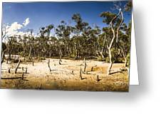Deception Bay Conservation Park Greeting Card