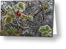 Decorated With Leaves Greeting Card