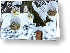 Decorations In The Snow Greeting Card