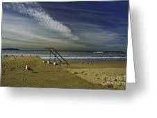 Dee Why Beach Sydney Greeting Card