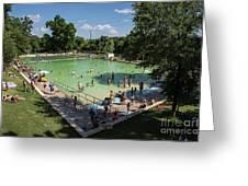 Deep Eddy Pool Is A Family Friendly, Family Fun, Public Swimming Pool In Austin, Texas Greeting Card