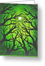Deep Green Forest Greeting Card