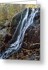 Deep Hallow Falls Virginia Greeting Card