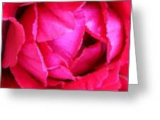 Deep Inside The Rose Greeting Card