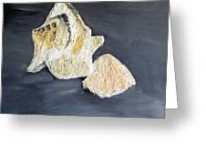 Deep Ocean Seashells Greeting Card by Leslye Miller