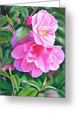Deep Pink Camellias Greeting Card by Sharon Freeman