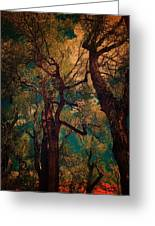 Deep Trees Greeting Card