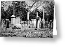 Deep Within Evergreen Cemetery Greeting Card
