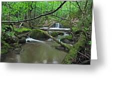 Deep Woods Stream 2 Greeting Card