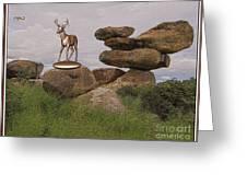 Deer 11 Greeting Card