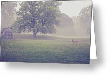Deer By Barn On A Foggy Morning Greeting Card