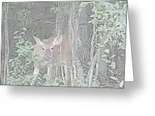 Deer By The Tree Line Greeting Card