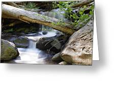 Deer Creek 03 Greeting Card