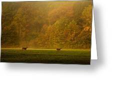Deer Run Greeting Card