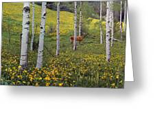 Deer In Spring Greeting Card