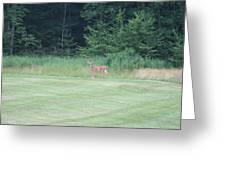 Deer In The Midst Greeting Card