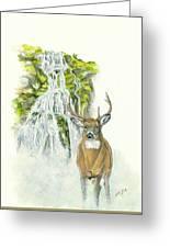 Deer In The Mist Greeting Card