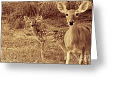 Deer Sepia V3 Greeting Card