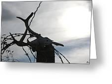 Deer Skull In Wire Greeting Card