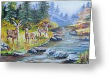 Deers At The Water Greeting Card