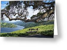 Del Valle Reservoir Greeting Card