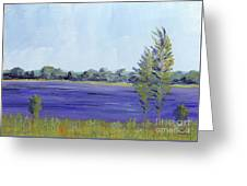 Delaware River Greeting Card