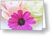 Delicate Contrast Greeting Card