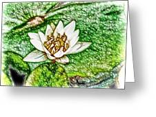 Delicate Fragrance Greeting Card