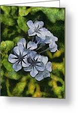 Delicate Plumbago Painted In Van Goch Style Greeting Card