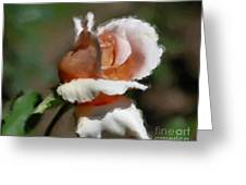 Delicate Rosebud Greeting Card