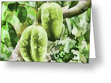 Delicious Star Fruit Greeting Card