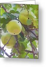 Delicious Yellow Apple In Summer Greeting Card