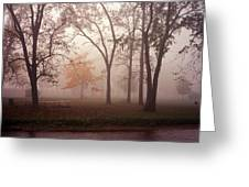 Delphi Park Annarbor Michigan In Fog Greeting Card