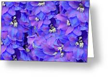 Delphinium Blue Greeting Card