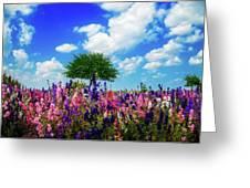 Delphinium Daydreams Greeting Card