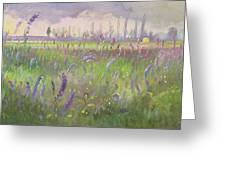 Delphiniums, Storm Passing Greeting Card