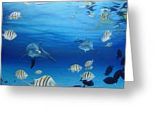 Delphinus Greeting Card