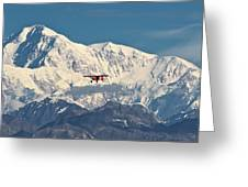 Denali Air Greeting Card