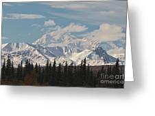 Denali In Broad Pass Greeting Card