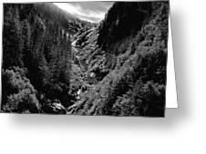 Denali National Park 3 Greeting Card