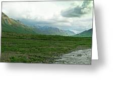 Denali National Park Landscape 2 Greeting Card