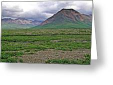 Denali National Park Landscape 3 Greeting Card