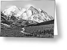 Denali - Number One Greeting Card