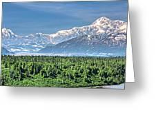 Denali Panorama Greeting Card