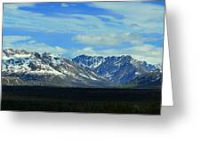 Denali Valley Greeting Card