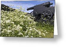 Denmark, Old Cannon On Bastion Greeting Card